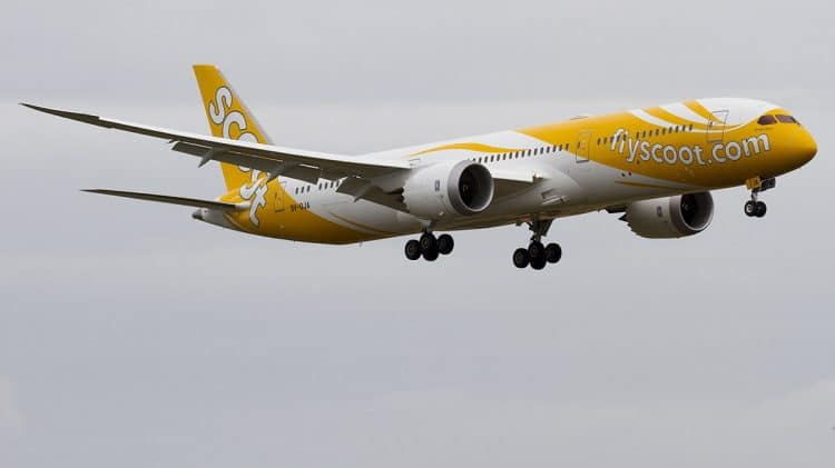Scoot Becomes Member Of IATA BSP For India